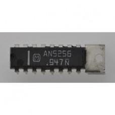 AN5256